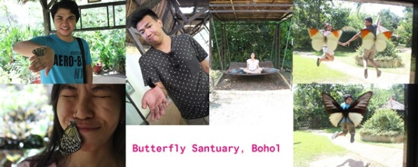 I Butterfly Sanctuary